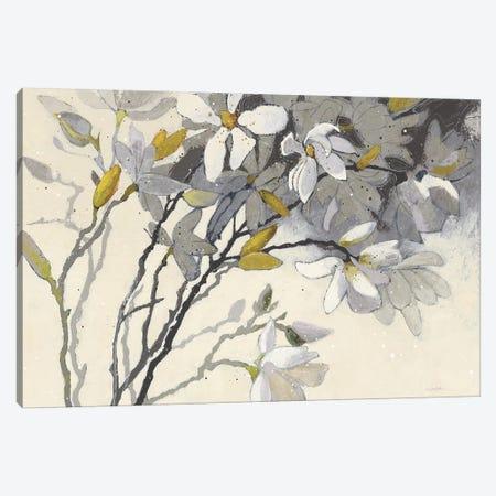 Magnolias Canvas Print #WAC7090} by Shirley Novak Canvas Artwork