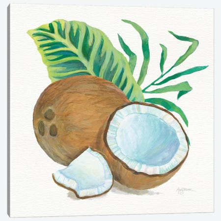 Coconut Palm II Canvas Print #WAC7106} by Mary Urban Art Print
