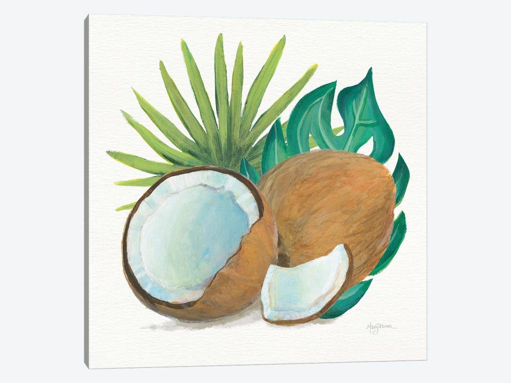 Coconut Palm V by Mary Urban 1-piece Canvas Artwork