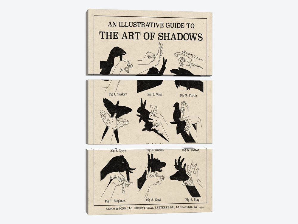 The Art Of Shadows X by Mary Urban 3-piece Canvas Wall Art