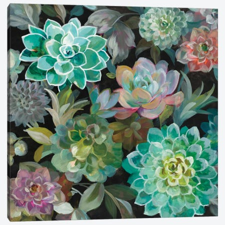 Floral Succulents In Zoom Canvas Print #WAC7202} by Danhui Nai Canvas Print