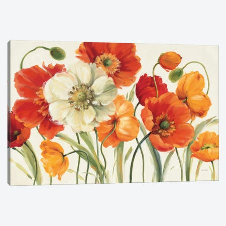 Poppies Melody I Canvas Print #WAC721} by Lisa Audit Canvas Print