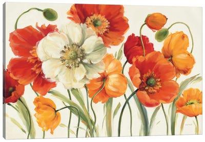 Poppies Melody I Canvas Print #WAC721