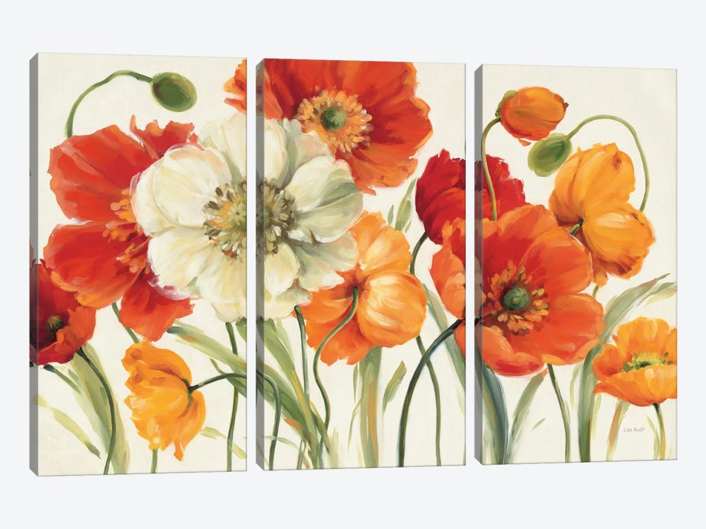 Poppies Melody I by Lisa Audit 3-piece Canvas Artwork