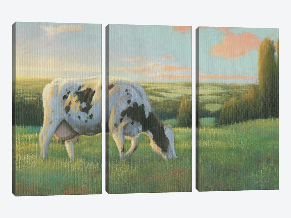 Farm Life I by James Wiens 3-piece Canvas Art Print