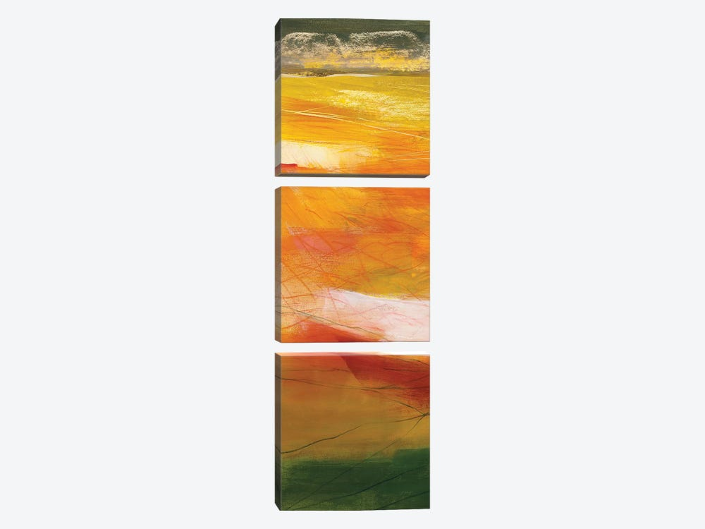 Bog Journey I by Jo Maye 3-piece Art Print