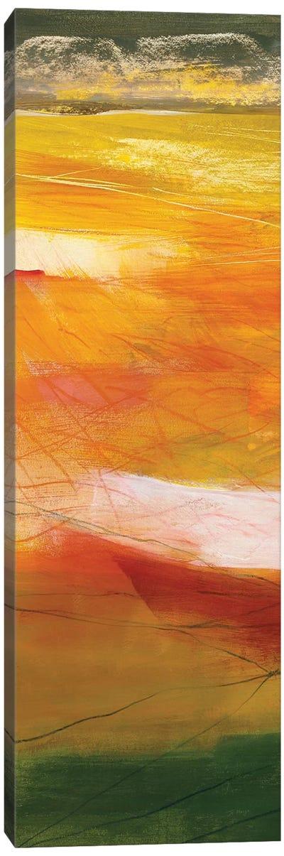 Bog Journey I Canvas Art Print