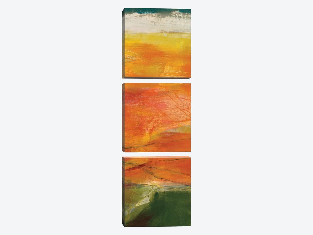 Bog Journey II by Jo Maye 3-piece Canvas Wall Art