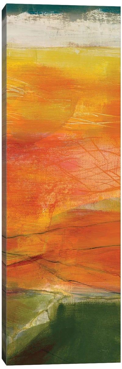 Bog Journey II Canvas Art Print