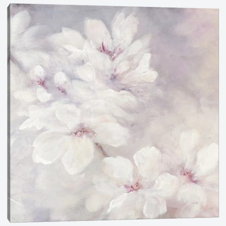 Cherry Blossoms, Square Canvas Print #WAC7250} by Julia Purinton Canvas Artwork
