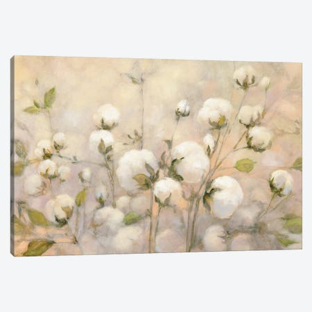 Cotton Field Canvas Print #WAC7251} by Julia Purinton Canvas Artwork
