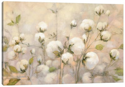 Cotton Field Canvas Art Print