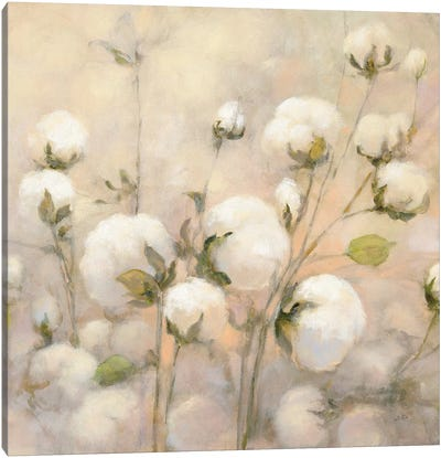 Cotton Field, Close Up Canvas Art Print