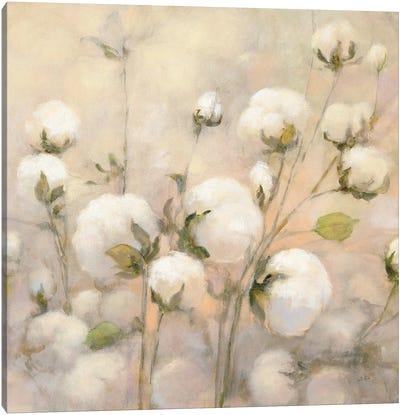 Cotton Field, Close Up Canvas Art Print