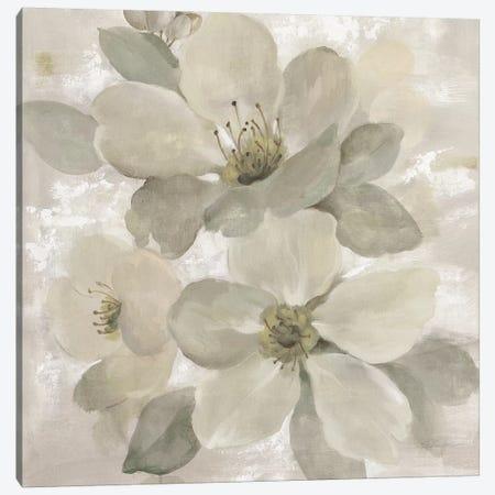 White On White Floral I Canvas Print #WAC7337} by Silvia Vassileva Canvas Art