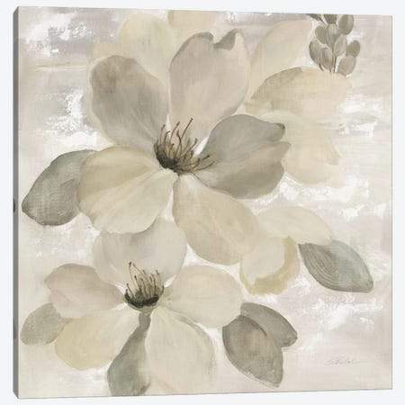 White On White Floral II Canvas Print #WAC7338} by Silvia Vassileva Canvas Art Print