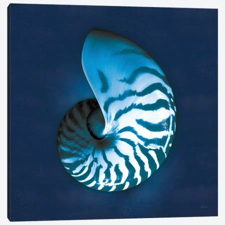 Cyanotype Sea I Canvas Print #WAC7339} by Sue Schlabach Art Print