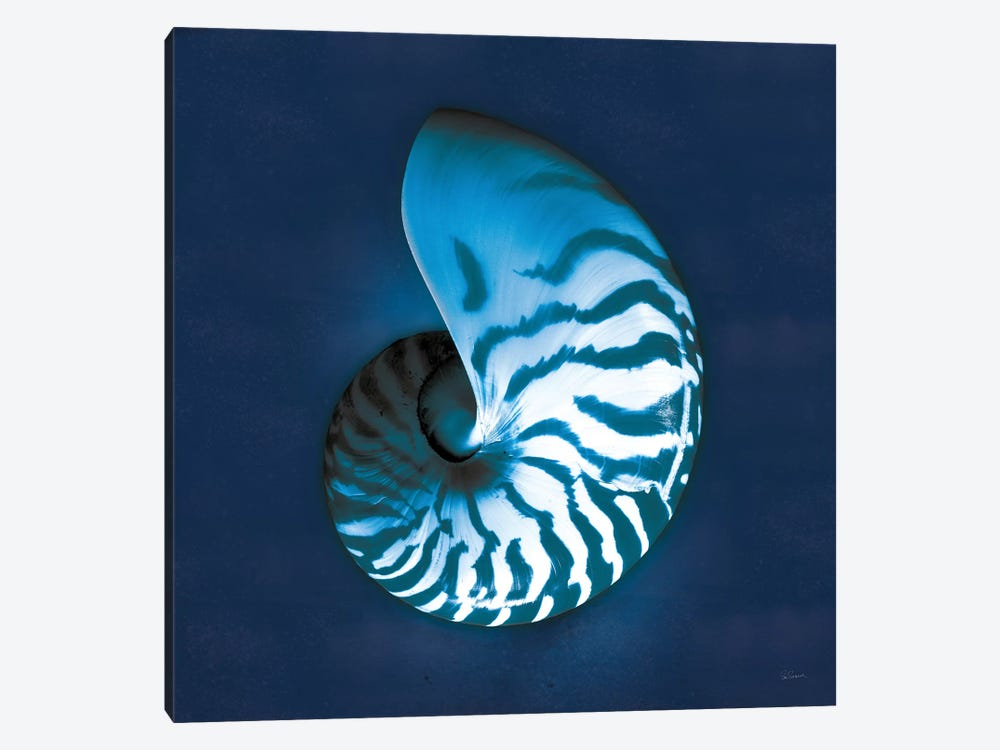 Cyanotype Sea I by Sue Schlabach 1-piece Canvas Wall Art