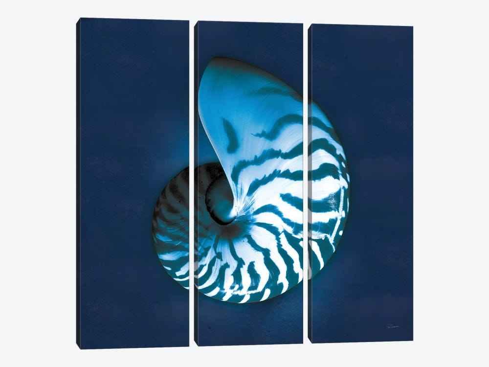 Cyanotype Sea I by Sue Schlabach 3-piece Canvas Wall Art