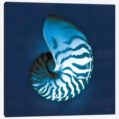 Cyanotype Sea I Canvas Print #WAC7339} by Sue Schlabach Art Print