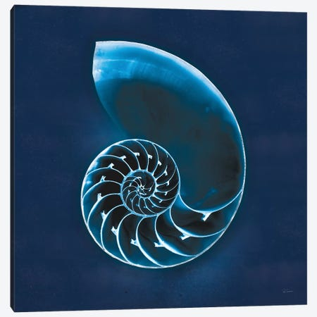 Cyanotype Sea II Canvas Print #WAC7340} by Sue Schlabach Canvas Artwork