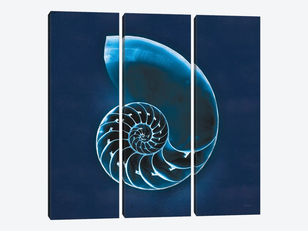 Cyanotype Sea II 3-piece Canvas Art