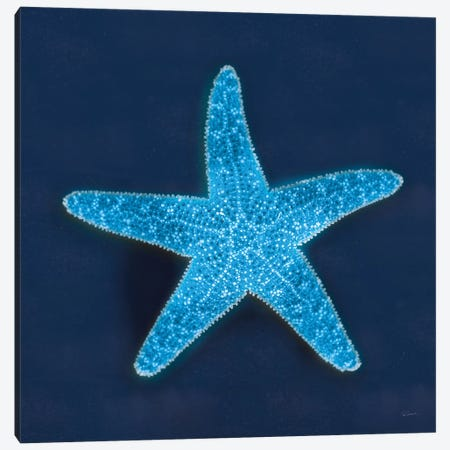 Cyanotype Sea III Canvas Print #WAC7341} by Sue Schlabach Canvas Art