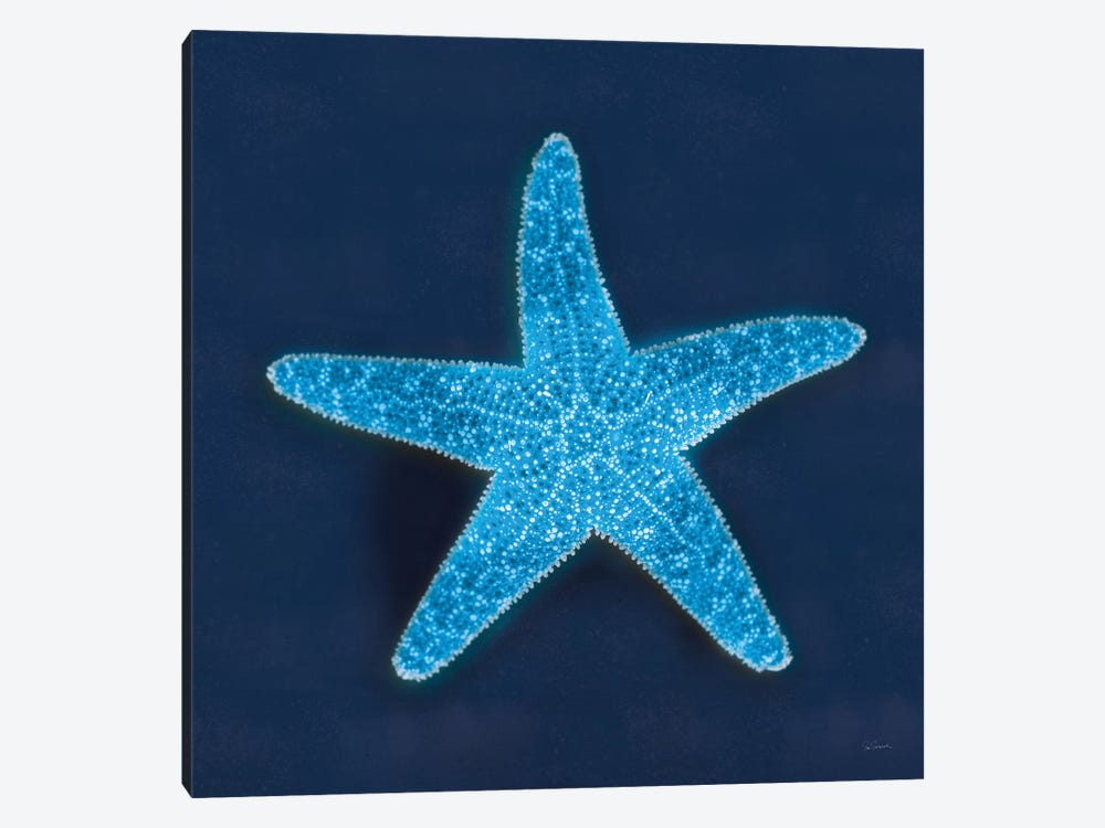 Cyanotype Sea III by Sue Schlabach 1-piece Art Print