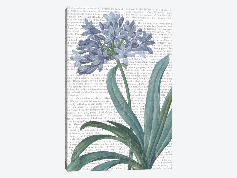 Summer Botanicals I by Wild Apple Portfolio 1-piece Art Print