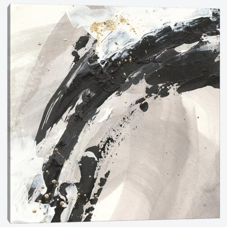 Galaxy I Canvas Print #WAC7359} by Chris Paschke Canvas Print