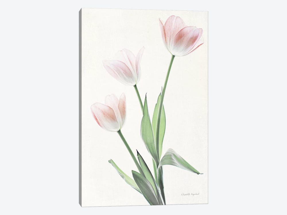 Light And Bright Floral I by Elizabeth Urquhart 1-piece Canvas Artwork