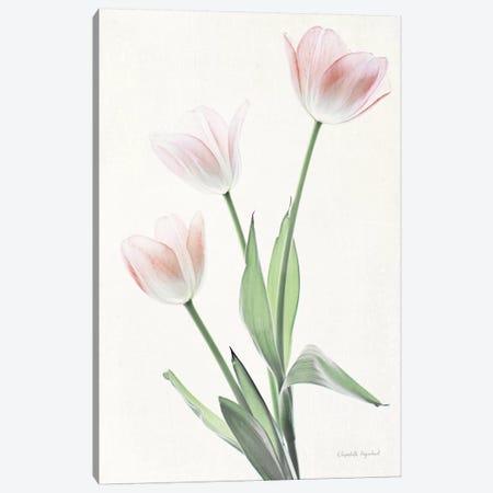 Light And Bright Floral I Canvas Print #WAC7375} by Elizabeth Urquhart Canvas Artwork