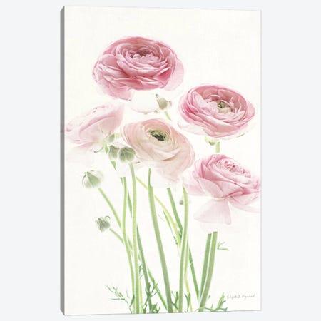 Light And Bright Floral V Canvas Print #WAC7379} by Elizabeth Urquhart Canvas Print