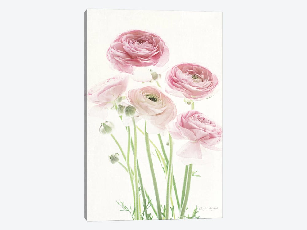Light And Bright Floral V by Elizabeth Urquhart 1-piece Canvas Artwork