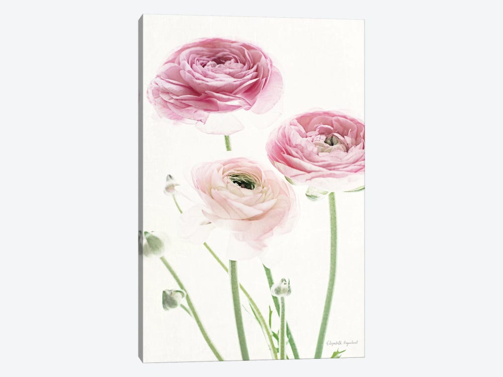 Light And Bright Floral VI by Elizabeth Urquhart 1-piece Canvas Art