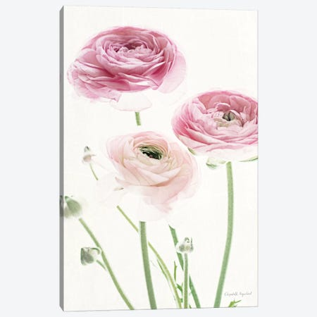 Light And Bright Floral VI 3-Piece Canvas #WAC7380} by Elizabeth Urquhart Canvas Wall Art