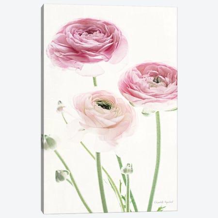 Light And Bright Floral VI Canvas Print #WAC7380} by Elizabeth Urquhart Canvas Wall Art