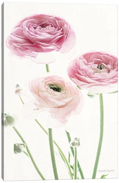 Light And Bright Floral VI Canvas Art Print