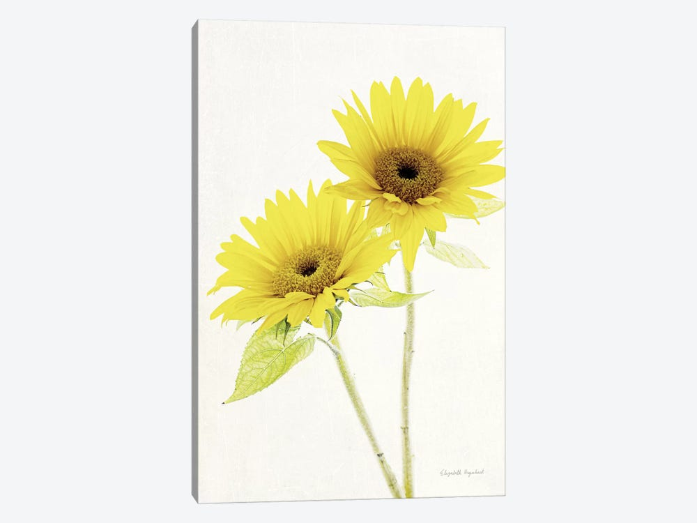 Light And Bright Floral VII by Elizabeth Urquhart 1-piece Canvas Print