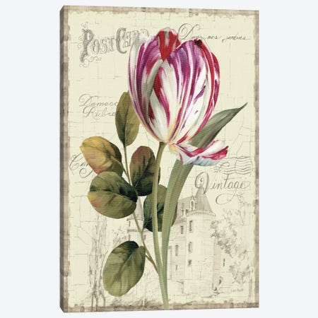 Garden View II Tulip Canvas Print #WAC742} by Lisa Audit Canvas Art Print