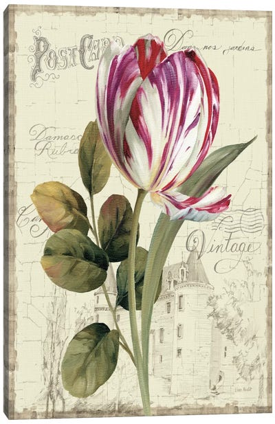 Garden View II Tulip Canvas Art Print