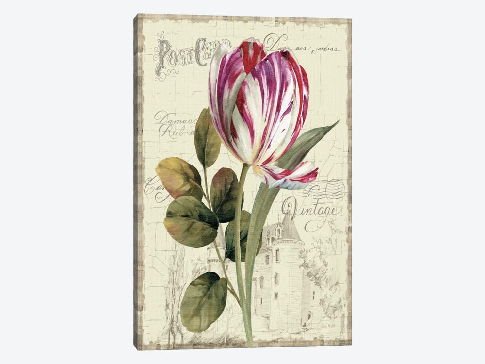 Garden View II Tulip by Lisa Audit 1-piece Art Print
