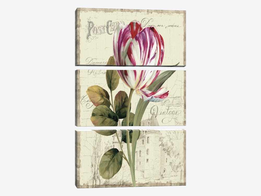 Garden View II Tulip by Lisa Audit 3-piece Art Print
