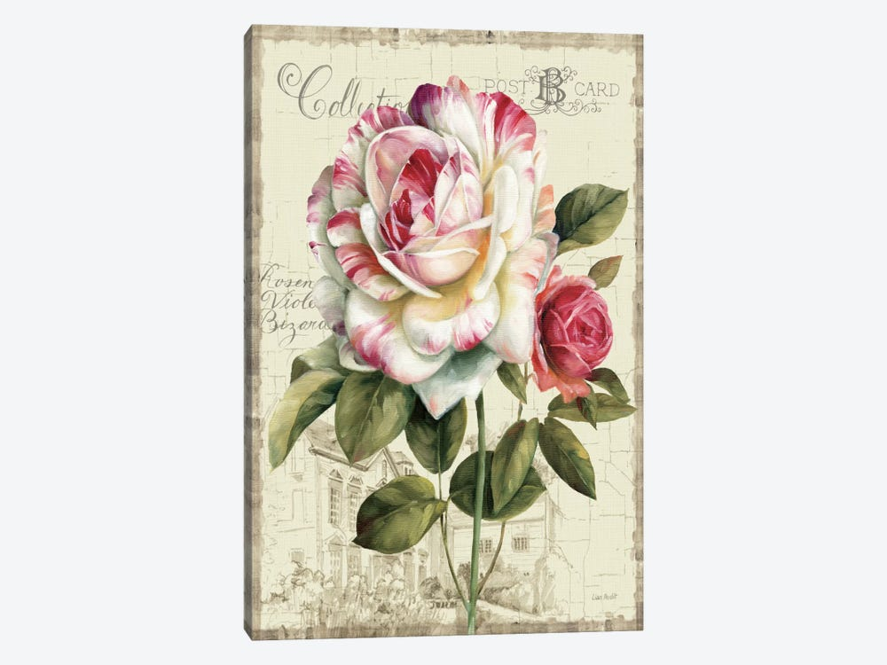 Garden View III Rose by Lisa Audit 1-piece Canvas Wall Art