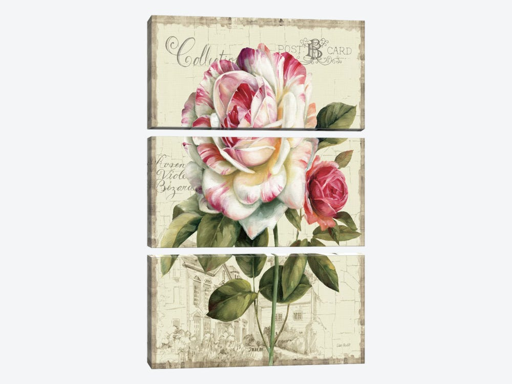 Garden View III Rose by Lisa Audit 3-piece Canvas Artwork