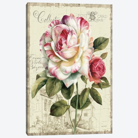 Garden View III Rose 3-Piece Canvas #WAC743} by Lisa Audit Canvas Art Print