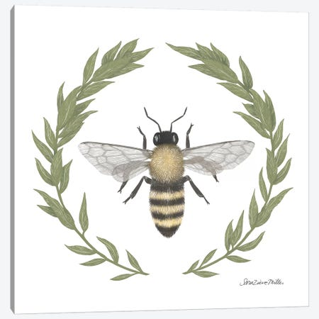 Happy To Bee Home I Canvas Print #WAC7444} by Sara Zieve Miller Canvas Art