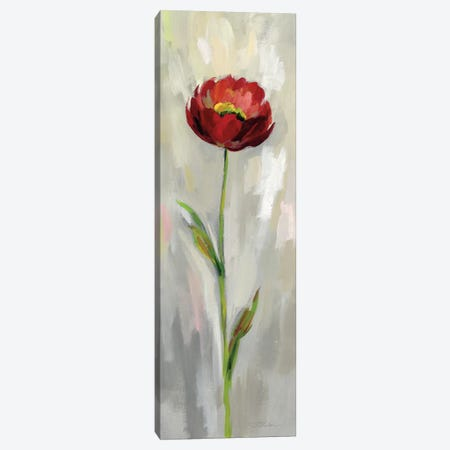 Single Stem Flower II Canvas Print #WAC7453} by Silvia Vassileva Canvas Artwork