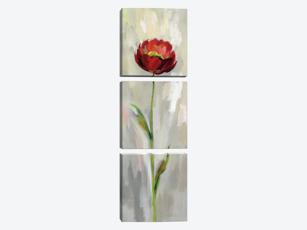 Single Stem Flower II by Silvia Vassileva 3-piece Canvas Print