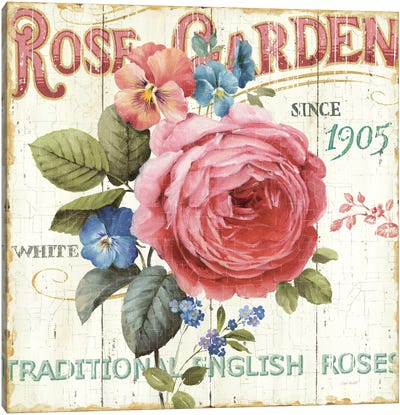 Rose Garden I Canvas Print #WAC745